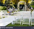 Hochzeit Im Garten Deko Schön Hochzeit Garten