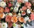 Hochzeitsdeko Garten Schön Instabouquet Instagram Hashtags 21 666 Posts S and