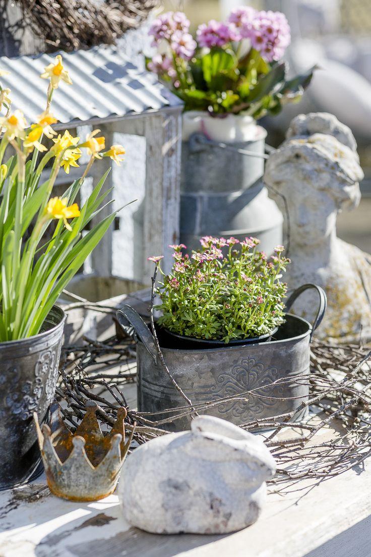 Holzleiter Deko Garten Elegant Gartensaison ist Eröffnet Oder Mein Garten Ende Februar