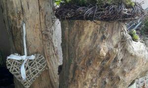 21 Schön Holzstämme Dekorieren