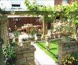 Idee Garten Best Of 31 Schön Garten Terrasse Ideen Frisch
