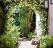 Idee Garten Frisch Gorgeous Front Yard Courtyard Landscaping Ideas 4