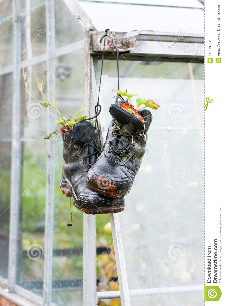 Idee Garten Schön Pair Od Abandoned Leather Black Shoes Used Like Flower Pots