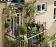 Ideen Balkon Schön We Have some Terrific Balcony Garden Design Ideas as Well as