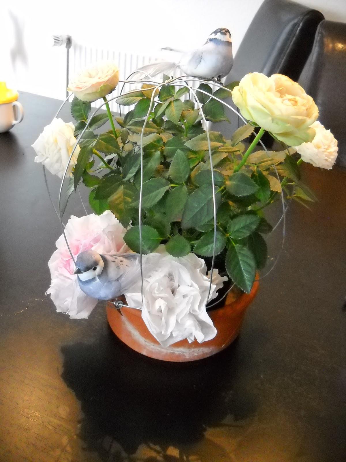 Ideen Für Den Garten Genial Diy Hochzeit August 2013