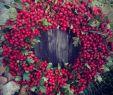 Japanische Gartendeko Luxus Mn Postingme