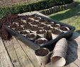 Japanische Gartengestaltung Inspirierend Stabile Universalwanne