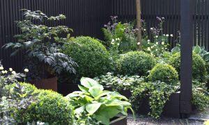 32 Schön Japanischer Garten Ideen