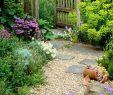 Kiesgarten Anlegen Neu 8 Garden Design Features that Will Make the whole Space E