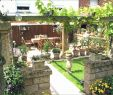 Kleine Gärten Gestalten Bilder Genial Gartengestaltung Kleine Garten