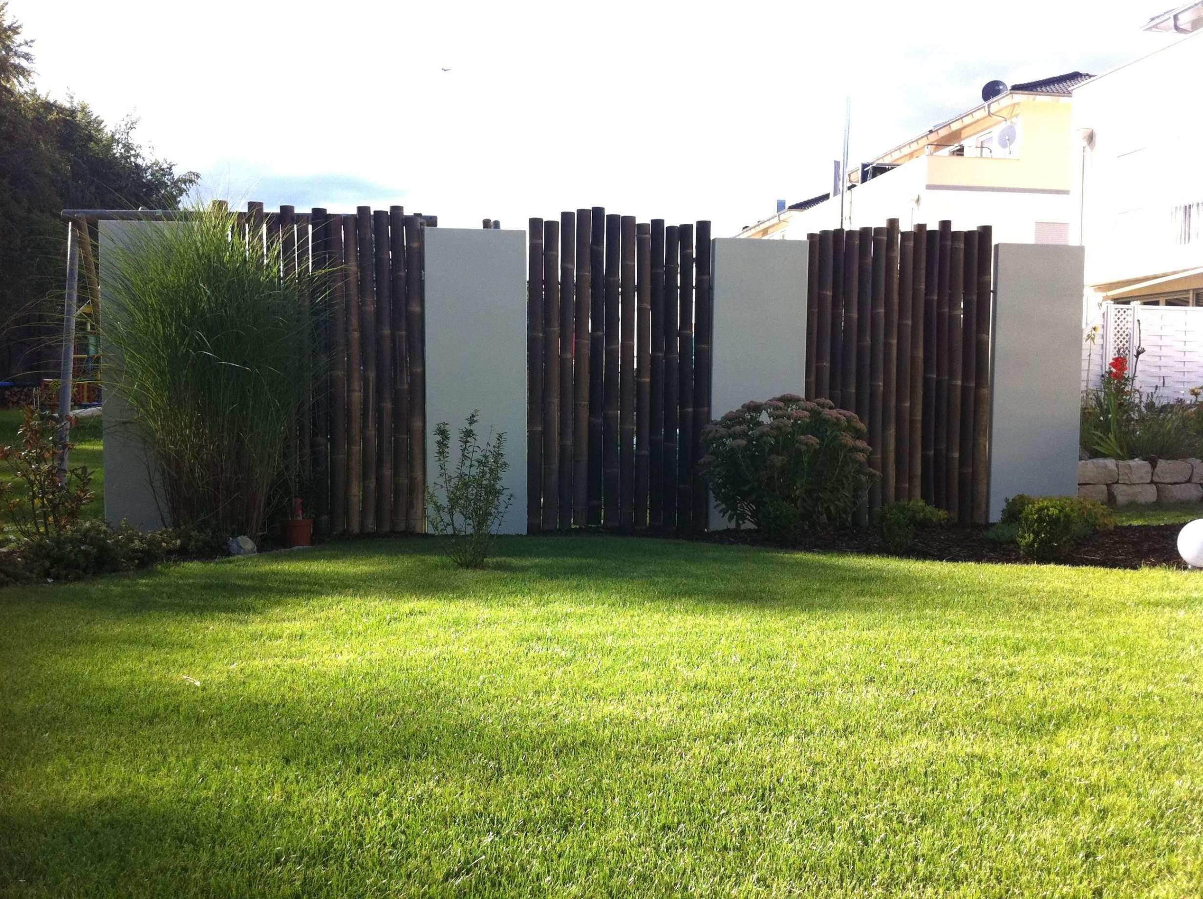 garten sichtschutz bambus neu terrasse pflanzen sichtschutz temobardz home blog of garten sichtschutz bambus