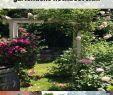 Kleinen Garten Gestalten Ideen Schön 40 Reizend Pinterest Garten Neu