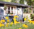 Kleines Beet Gestalten Frisch Garten Gestalten Mit Wenig Geld Besten Tipps Und Tricks