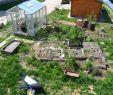 Kleines Beet Gestalten Luxus Garten Gestalten Mit Wenig Geld Verwildeter so Fngst Du An