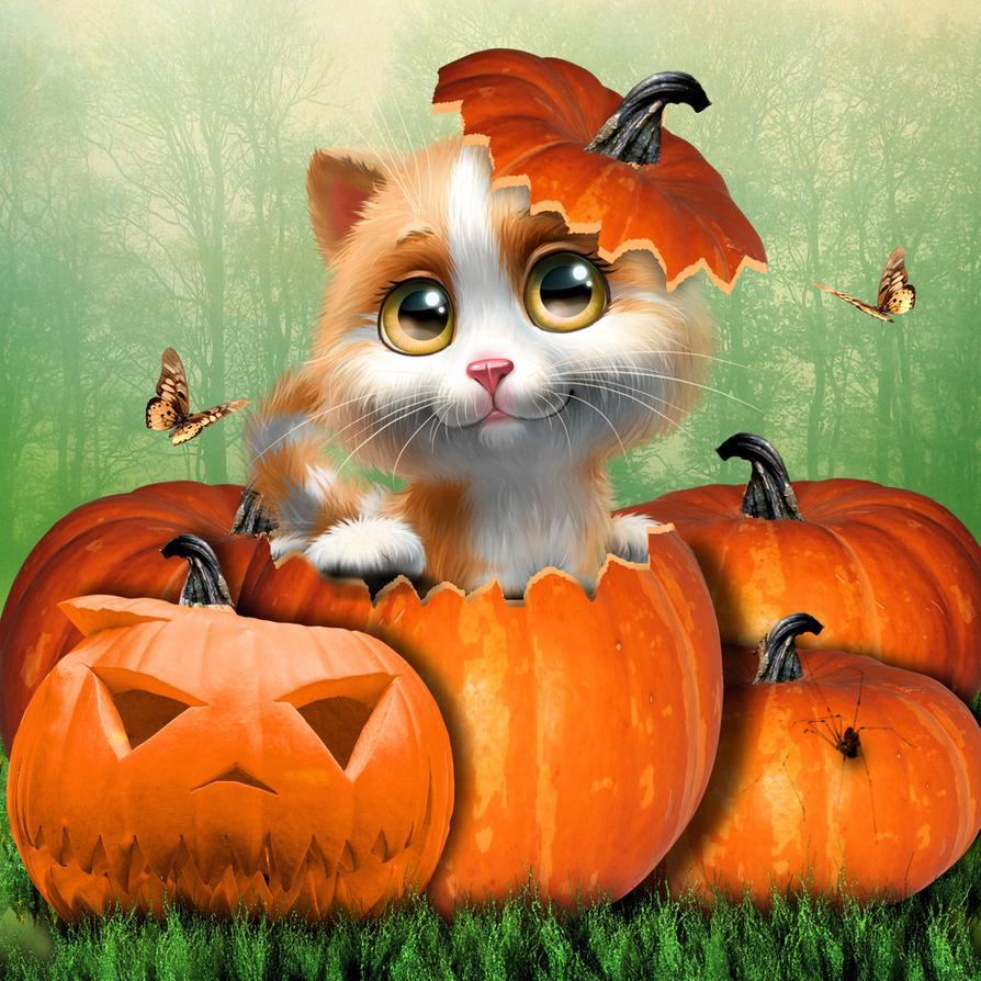 sweet kitten halloween