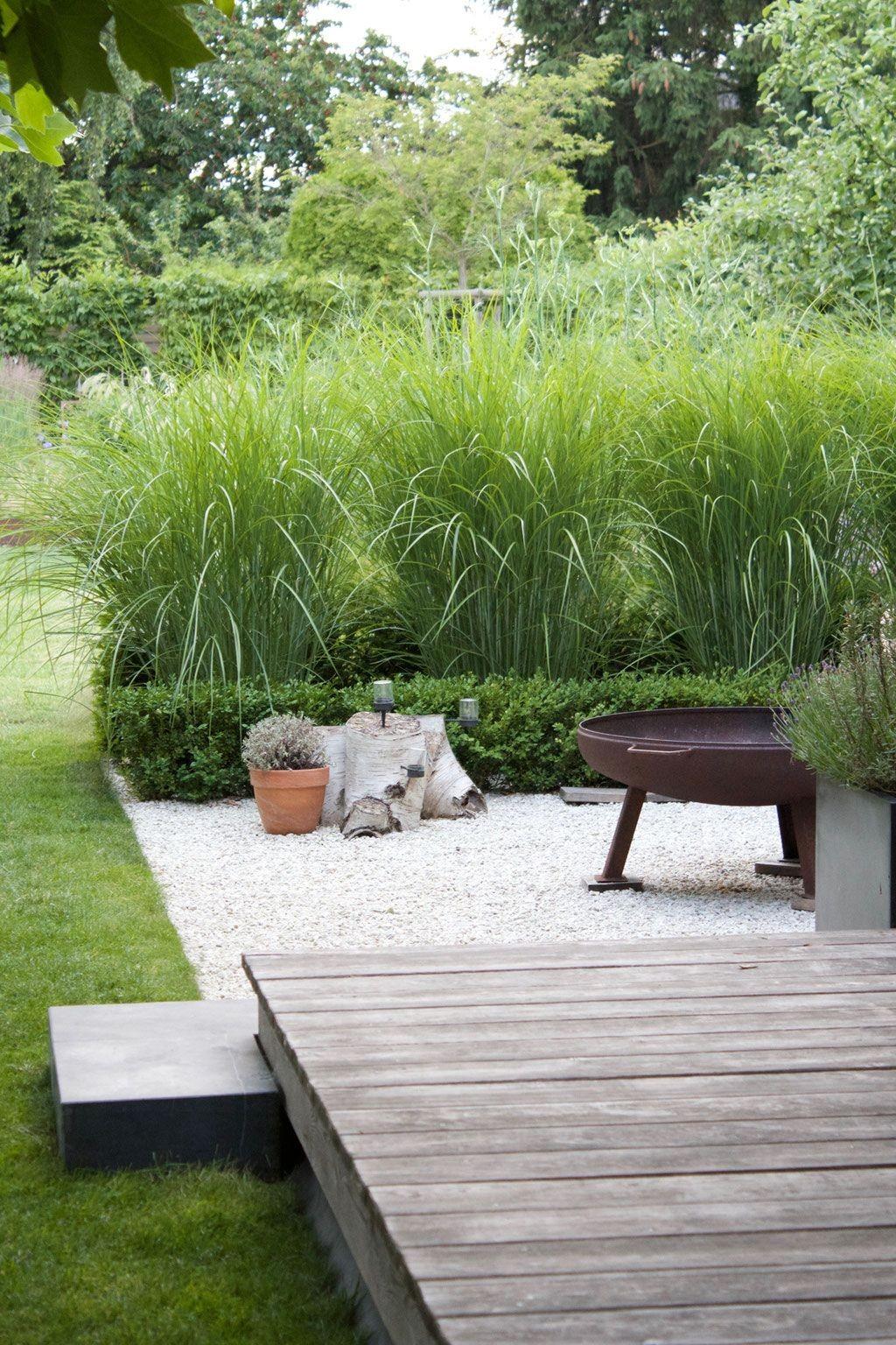artigegarten sommerterrasse hinter chinaschilf feuerschale terrasse of feuerschale terrasse