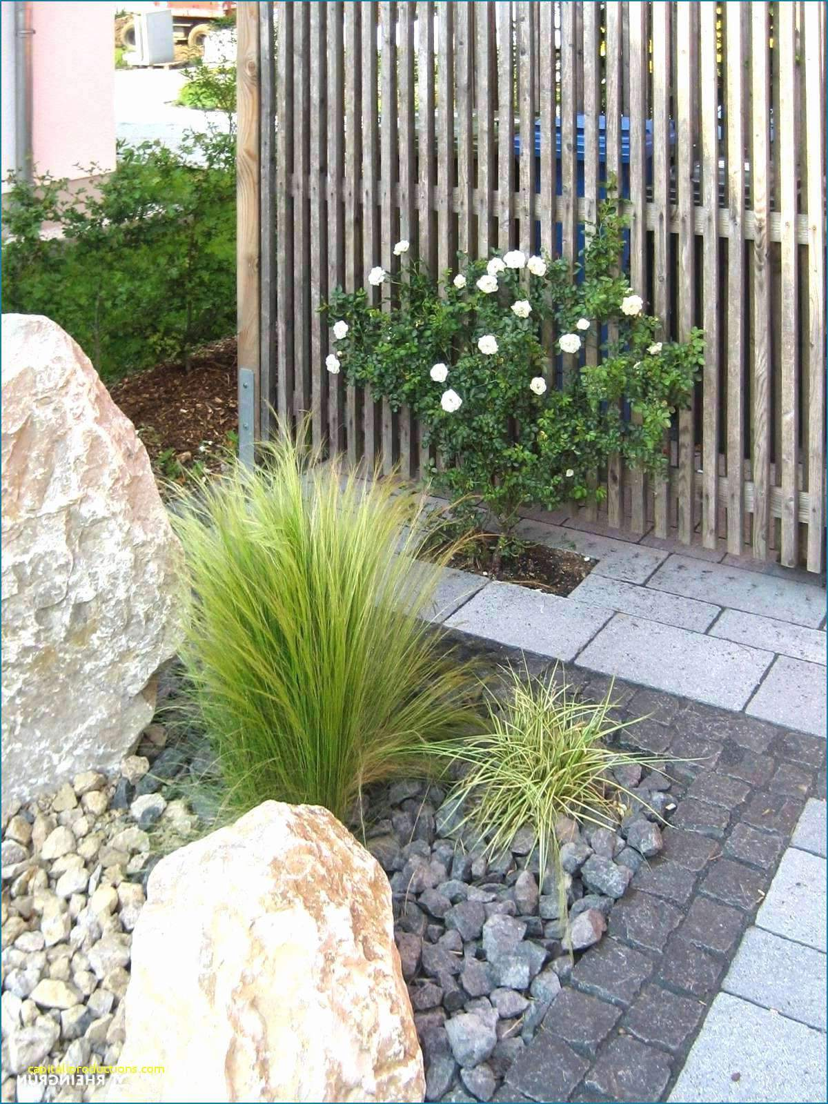 Kosten Gartengestaltung Inspirierend 25 Elegant Luxus Garten Schön
