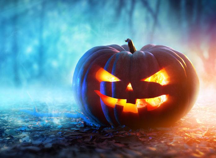 7 gute horrorfilme fuer halloween