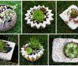 Kreative Gartenideen Selber Machen Neu Kreative Mitbringsel Aus Beton