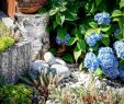 Landhausstil Gartendeko Inspirierend ▷ Veronika Lustova Villagelady Veronika Lustová Každ½m
