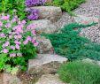 Landschaftsgärtner Einzigartig Treppen