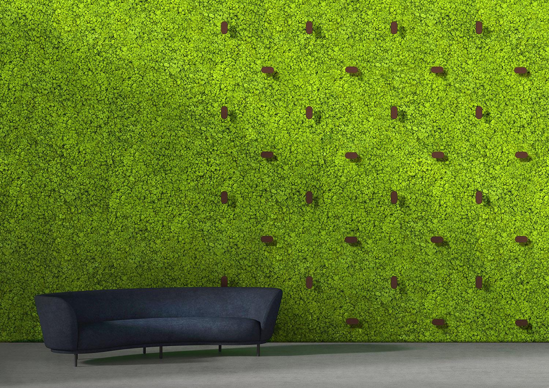 twinkles green wall 4 fam g arcit18