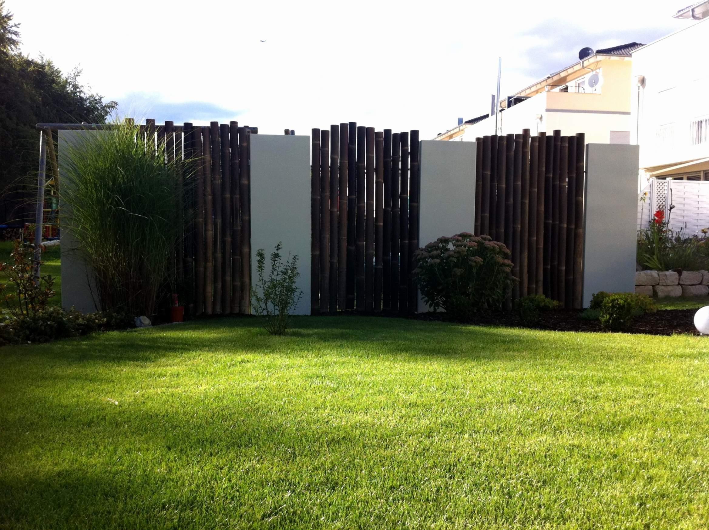 moderner sichtschutz im garten genial sichtschutz pflanzen terrasse temobardz home blog of moderner sichtschutz im garten