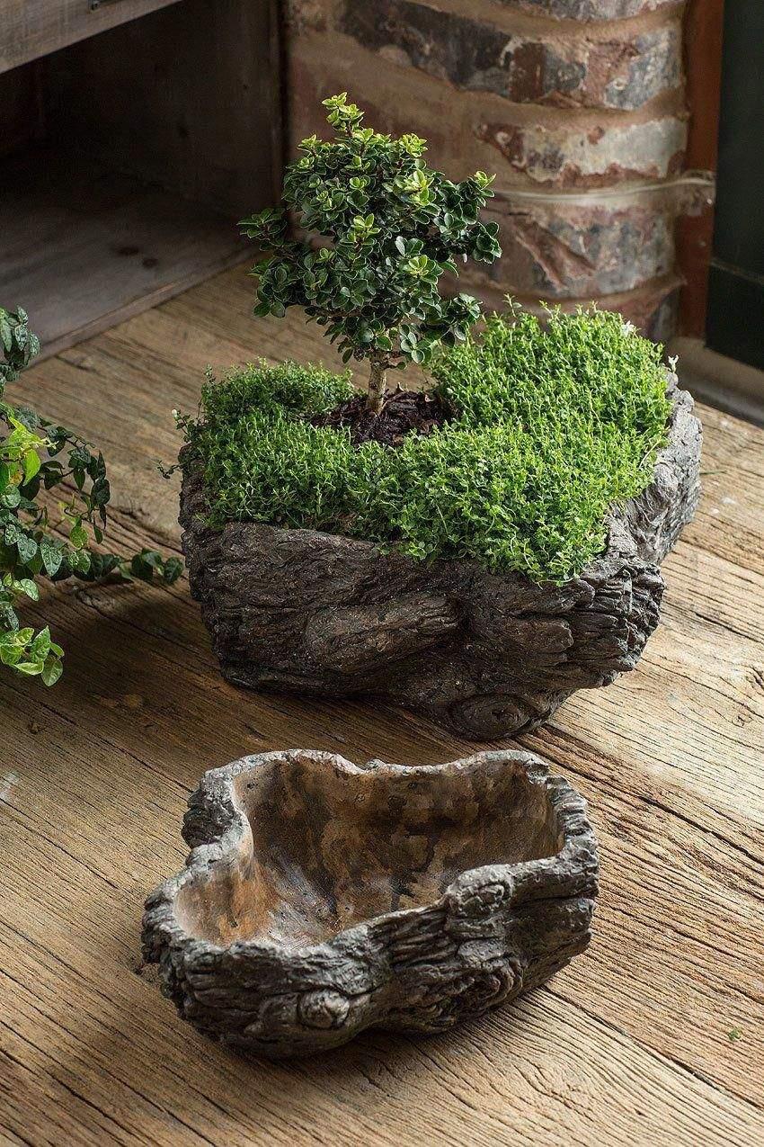 beton deko garten luxus cement burled bark planter set of 2 of beton deko garten
