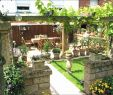 Mediteraner Garten Einzigartig 29 Frisch Garten Mediterran Gestalten Reizend