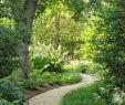 Mediterranen Garten Anlegen Schön 38 Neu Wege Im Garten Anlegen Das Beste Von