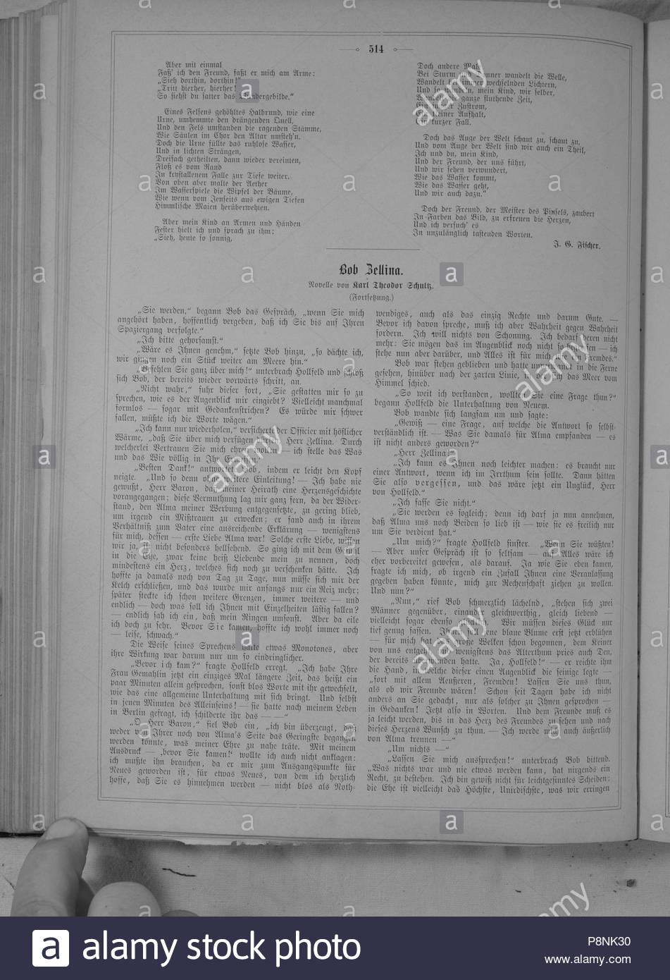 207 gartenlaube 1882 514 P8NK30