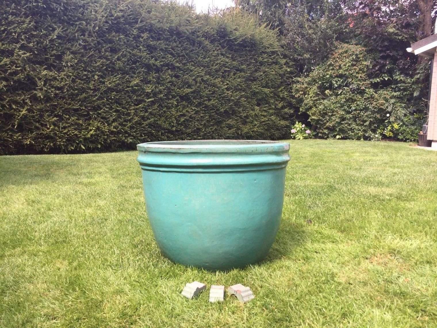 schoner garten ideen elegant pflanzen als sichtschutz im kubel temobardz home blog of schoner garten ideen 2