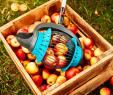 Metallskulpturen Garten Best Of Tipps Und Tricks Im Garten Mit Dem Gartenrollsieb Sammelst