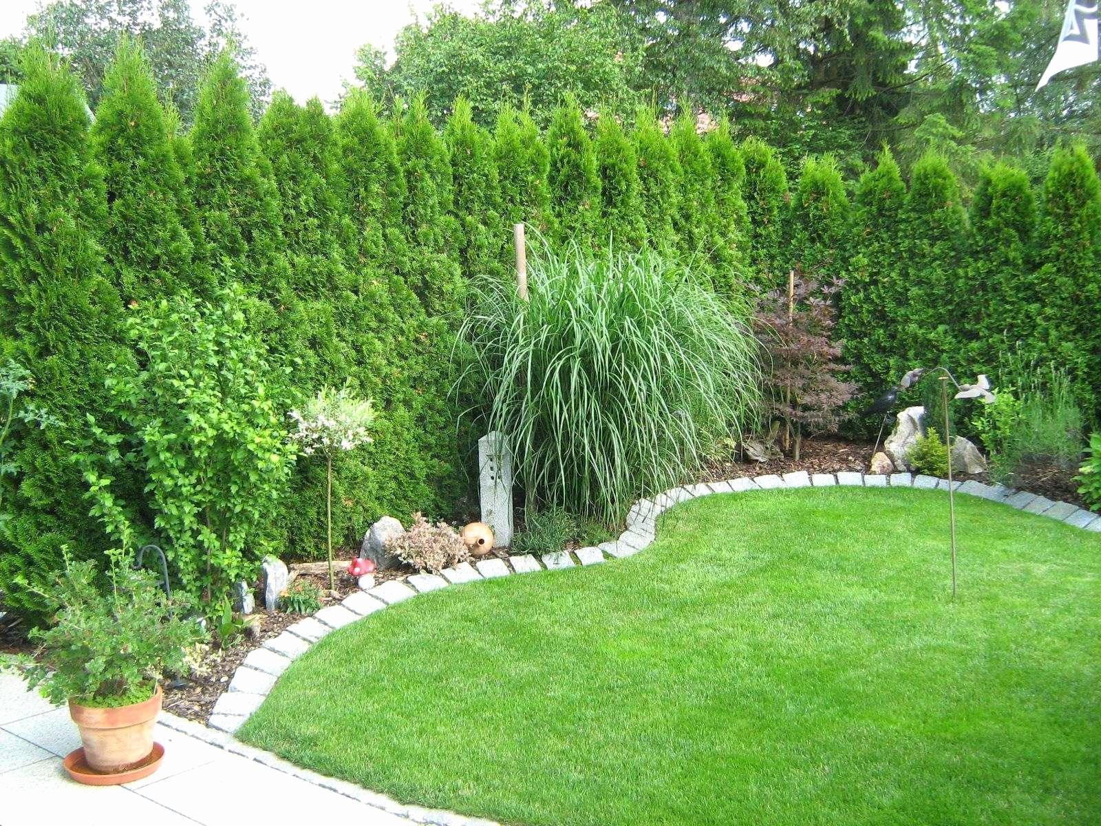 mini herb garden unique 37 neu mini garten selber machen of mini herb garden