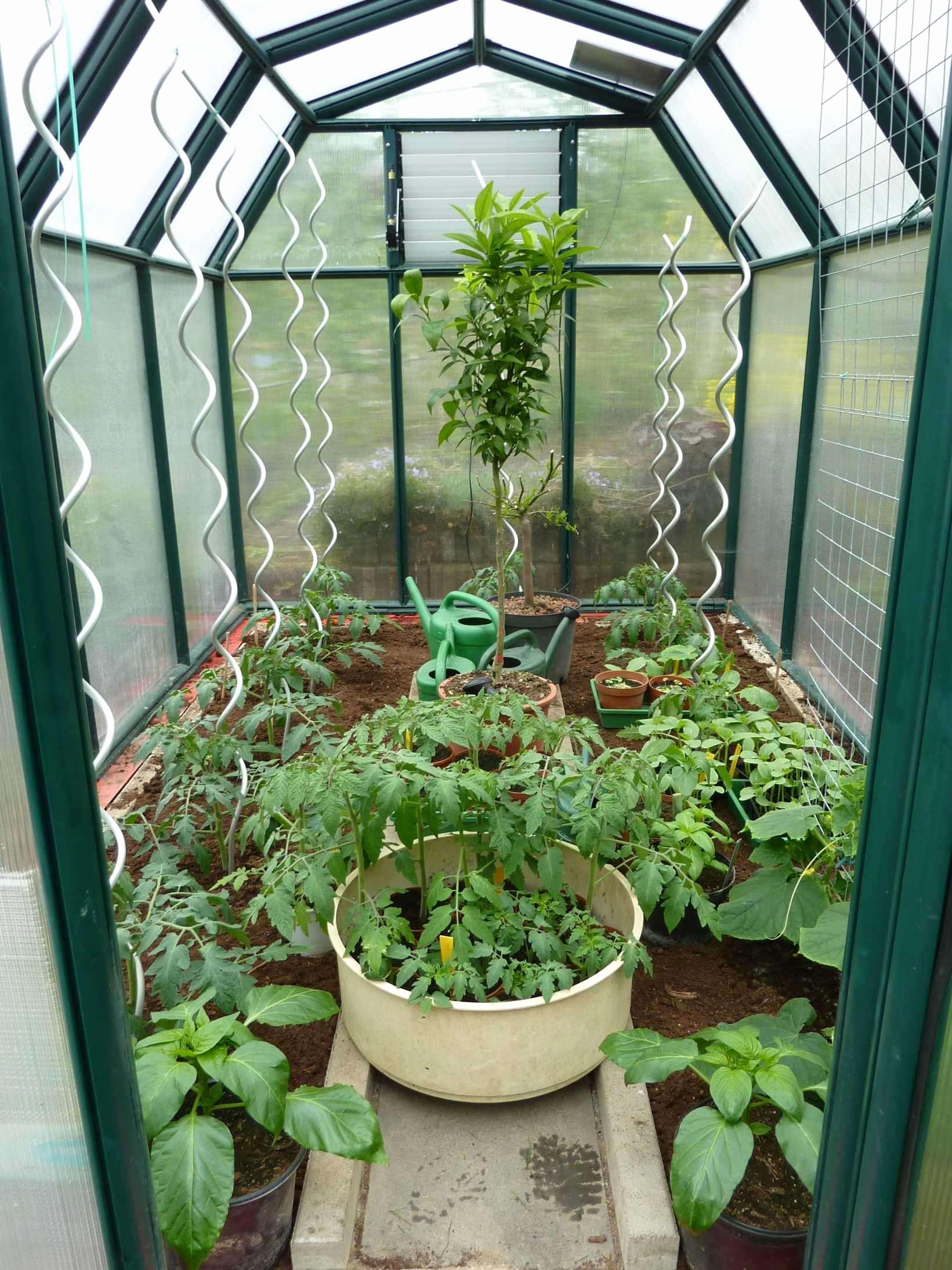mini herb garden best of 37 neu mini garten selber machen of mini herb garden