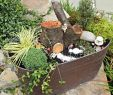 Miniatur Garten Selber Machen Elegant Mini Fairy Garden Collections Sitting Fairy Silhouette