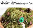 Miniatur Garten Selber Machen Luxus 590 En Iyi Dekoration Garten Görüntüsü