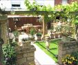 Miniatur Garten Selber Machen Neu 35 Reizend Kunstrasen Garten Einzigartig