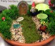 Miniatur Gartenaccessoires Frisch Fairy Garden Idea
