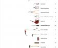 Miniatur Gartenaccessoires Inspirierend 2010 07 Gartenwerkzeuge De [pdf Document]