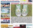 Moderne Gartenbepflanzung Elegant Wasserburger Blick Ausgabe 21