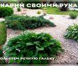 Moderne Gartenbepflanzung Luxus Рокарий своими руками