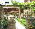 Moderne Gartengestaltung Beispiele Genial Gartengestaltung Bilder Sichtschutz Luxus 45 Einzigartig
