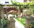 Moderne Kleine Gärten Frisch 25 Reizend Gartengestaltung Für Kleine Gärten Genial