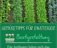 Naturnaher Garten Anlegen Neu Ve Able Growing 10 Tips for Beginners