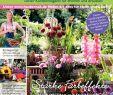 Naturnaher Garten Pflegeleicht Anlegen Elegant Calaméo Mein Para S 4 2018 Haubensak
