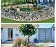 Naturnaher Garten Pflegeleicht Anlegen Genial 39 Reizend Naturnaher Garten Pflegeleicht Anlegen Elegant