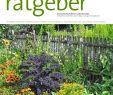 Naturnaher Garten Pflegeleicht Anlegen Luxus Der Praktische Gartenratgeber 09 2018 Pages 1 18 Text