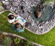 Natursteine Garten Genial Stalder Gartenwelten Ag Horticulture and Garden Maintenance