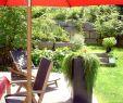 Natursteine Garten Luxus Muka Gestaltungssteine Kleine sortierung